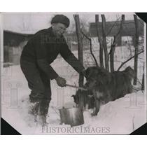 1926 Press Photo Gold Prospector feeding tallow to a husky - nee09925