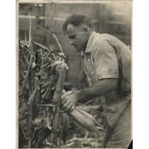 1926 Press Photo Elmer Williams - nee20523