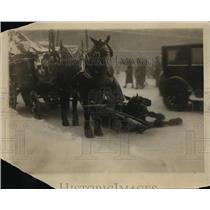 1926 Press Photo horse pulling wagon slips on icy city street