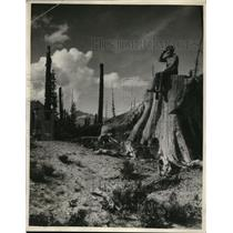 1930 Photo Marion Naughton poses recently logged forest Cascade Mts.