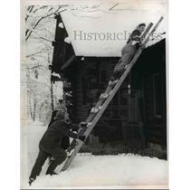 1953 Press Photo Jeanette Takacs & Rusty Saphire Troop 241  - nee37158