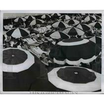 1954 Press Photo Eye Catching Parasol Pattern At FLorida Resort  - nee36758