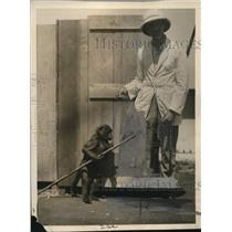 1925 Press Photo performing baboon - nex73322