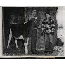 1947 Press Photo Don Cambell and 4-H club leader Mrs Edward McNamara with cow