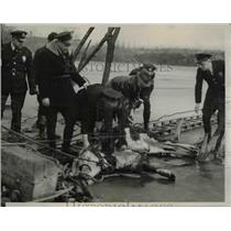 1940 Press Photo Escaped Steer Rescued from Icy Water, St. Louis - nee42279