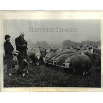 1934 Press Photo Widdlesex England moment of silence British war dead