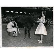 1959 Press Photo Chicago Red Sox Jim Busby milking a cow - nes29128