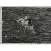 1937 Press Photo Peter Fick 100 meter swim at Natl AAU meet in Chicago