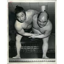 1951 Press Photo Japanese sumo wrestlers Onoumi & Fujatayama - nes28063