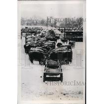 1948 Press Photo Denver Colorado Blizzard Is Harming Livestock  - nee53742