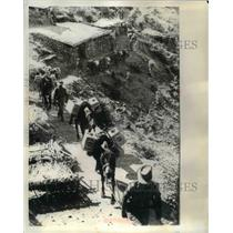 1965 Press Photo Long Mule Convoy Jammu and Kashmir for Indian Troops