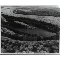 1969 Press Photo Crown vetch in full bloom on surface mined land near Cadiz, O.