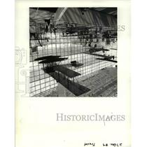 1990 Press Photo Historic aircraft at Seattle's Museum of Flight - orb44445