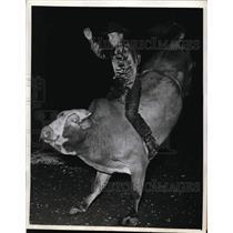 1942 Press Photo Cowboy Joe Hale in bull riding at Madison Square Garden