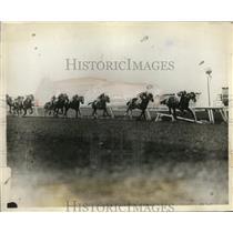 1928 Press Photo New Orleand Handicap race Justice F wins vs Jock, Sea Rocket