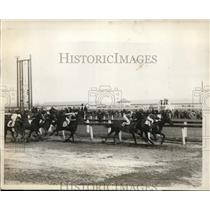 1928 Press Photo Aqueduct NY racetrack Take Ypur Time wins the race - nes46278