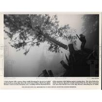 1989 Press Photo The Swiss Federal Institute of forestry Research - cva22106