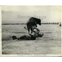 1932 Press Photo Mid Winter rodeo in Tuscon Arizona Bauback in steer riding