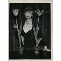 1934 Press Photo New York Mrs. John Scheepers with yellow cottage tulips NYC