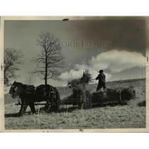 1937 Press Photo E.L Simpson, Farmer seeding hay for his sheep in Ohio