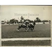 1929 Press Photo Princeton and West Point competing in college polo match, Bala