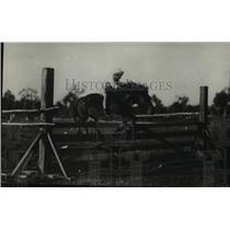 1923 Press Photo Jackie Pratt on jumper at Gymboree show in Australia