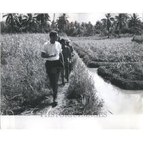 1967 Press Photo Binh Duong Aid Province Phil Carolin