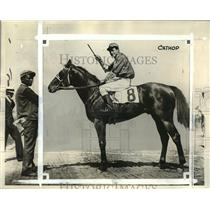 1932 Press Photo Cathop, owned by the Eastman stables, at Belmont Park