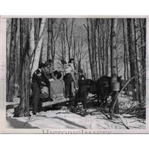 1948 Press Photo Middle College in Vermont spread it campus to Sugar Maple Woods