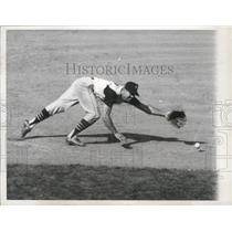 1964 Press Photo Pittsburgh Pirates infielder Bob Bailey dives for the ball