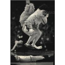 1987 Press Photo the Chicken jumped on dummy of a referee at halftime show.