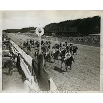 1926 Press Photo Perhaps So with jockey McLachlan wins the Stewards' Cup race