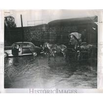 1955 Press Photo Chicago Rain Floods Cars But Not Horse