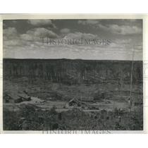 1942 Press Photo Great Lakes Paper Company Trees Camp
