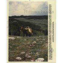1994 Press Photo Sheridan WY is a Town Where Cowboys are Real & Cars Unlocked