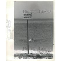 1971 Press Photo Lassing park Beach Swimmer Tampa Bay