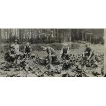 1918 Press Photo Massachusetts High School Boys at Farm Summer Camp - ftx00306