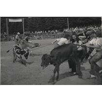 1948 Press Photo Crowds enjoy calf roping - spa38091