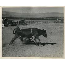 1936 Press Photo Cowboy thrown from steer at McCarty & Elliott ranch - nes06041