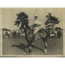 1927 Press Photo Devereaux Milburn Veteran American Polo Star to Captain Team