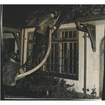 1946 Press Photo Firemen Ladder Fire Hose House