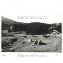 1985 Press Photo Tihuta Pass, Carpathian Mountains, Romania - ftx02142