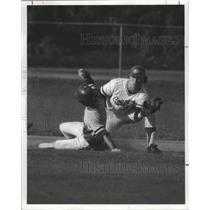 1978 Press Photo Washington State University Cougars baseball player, Dave Edler
