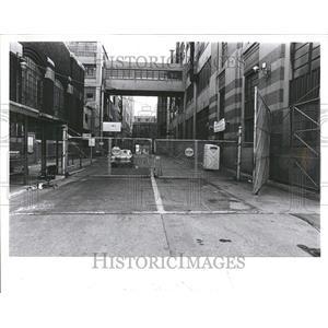 1981 Press Photo Uni Royal cafe plant road general view - RRV45805