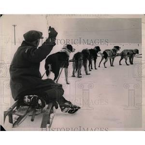 1922 Press Photo Dog Sledding