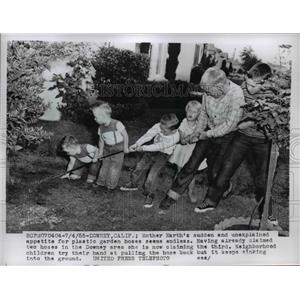 1955 Press Photo Downey California boys pull a hose from the ground at sinkhole