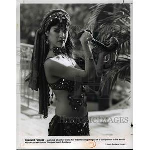 1990 Press Photo Tampa's Busch Gardens.