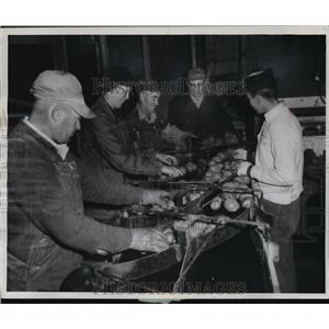 1956 Press Photo Grading potatoes in Wisconsin's Langlade County in the 1950s