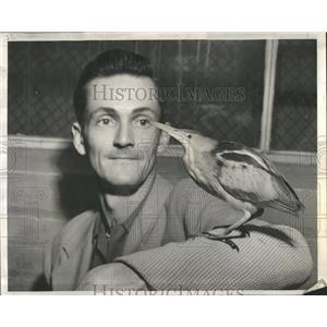 1954 Press Photo Class Vertebrates Bipedal Birds Egg - RRR81593