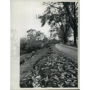 1974 Press Photo Lake Michigan Erosion Wall Street damage - mja42471
